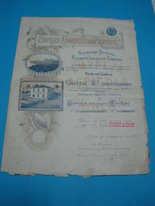 Agricultural Company Of Prince - Five Share Certificate - 1900 photo