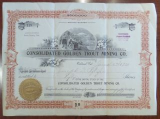 Consolidated Golden Trout Mining Co Butte County California 1900 photo