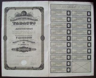 Netherlands 1923 Bond - Tabacus Herzog & Co Cavalla Amsterdam - Tobacco.  B1558 photo