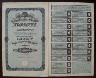 Netherlands 1923 Bond - Tabacus Herzog & Co Cavalla Amsterdam - Tobacco.  B1557 photo