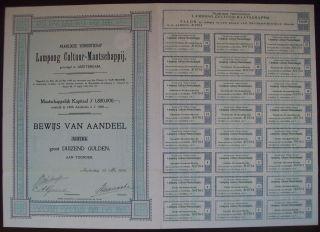 Netherlands 1900 Bond With Coupons Lampong Cultuur Maatschappij Tobacco.  B1526 photo