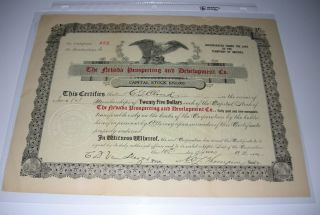 1907 Nevada Prospecting And Development Company Mining Stock Certificate photo