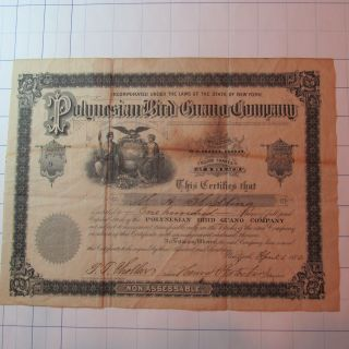 1880 Vintage Stock Certificate Polynesian Bird Guano Company photo