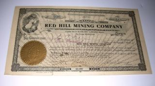 1906 Red Hill Mining Company Goldfield Nevada Gold Mining Stock Certificate photo