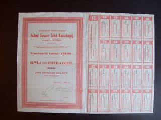 Netherlands 1904 Bond Certificate Holland Sumatra Tabak Amsterdam. .  A9790 photo