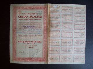 Belgium 1921 Bond - Credo Scaldis Tabacs Cigares Anvers - With Coupons.  A9767 photo