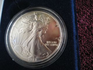 NO SPOTTING 2010 W Proof Silver American Eagle with  box and COA OGP
