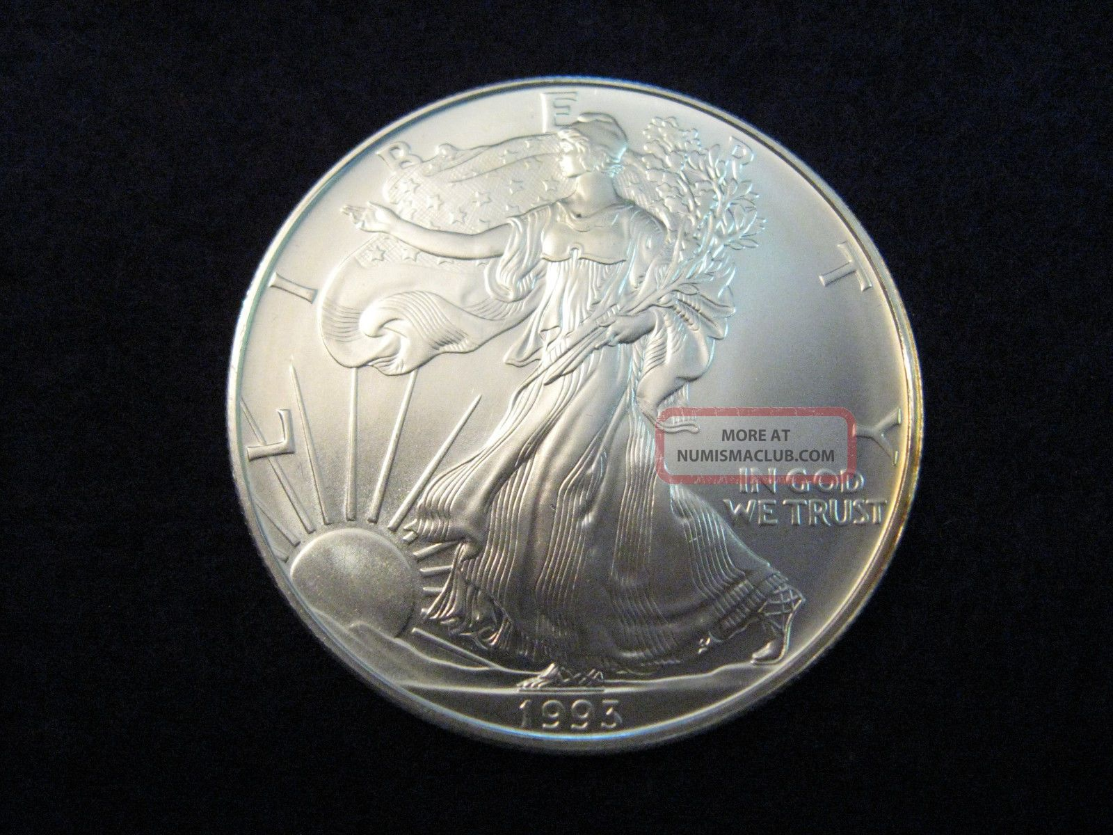 1993 American Eagle 1oz Fine Silver One Dollar Bullion Coin