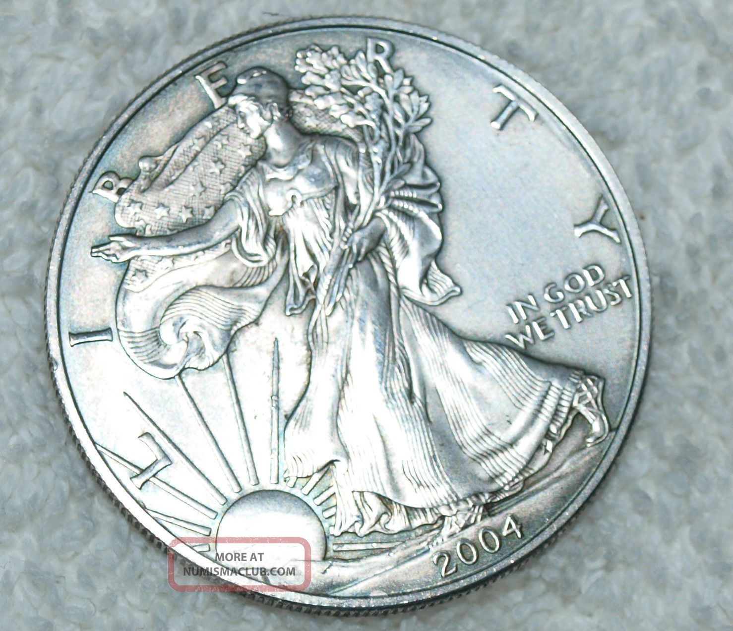 2004 Walking Liberty American Eagle 1 Oz Silver Dollar Coin