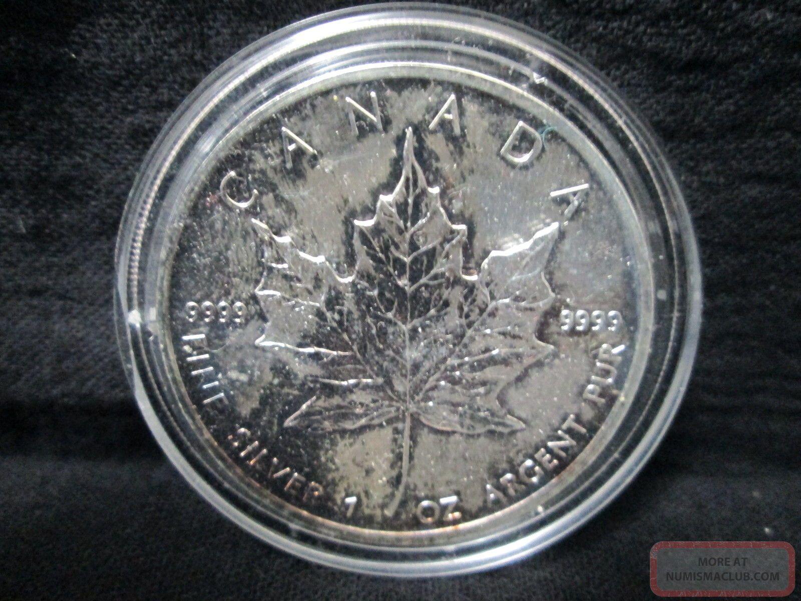 5 Dollars Elizabeth Ii 9999 Silver Proof Coin Canada 1989
