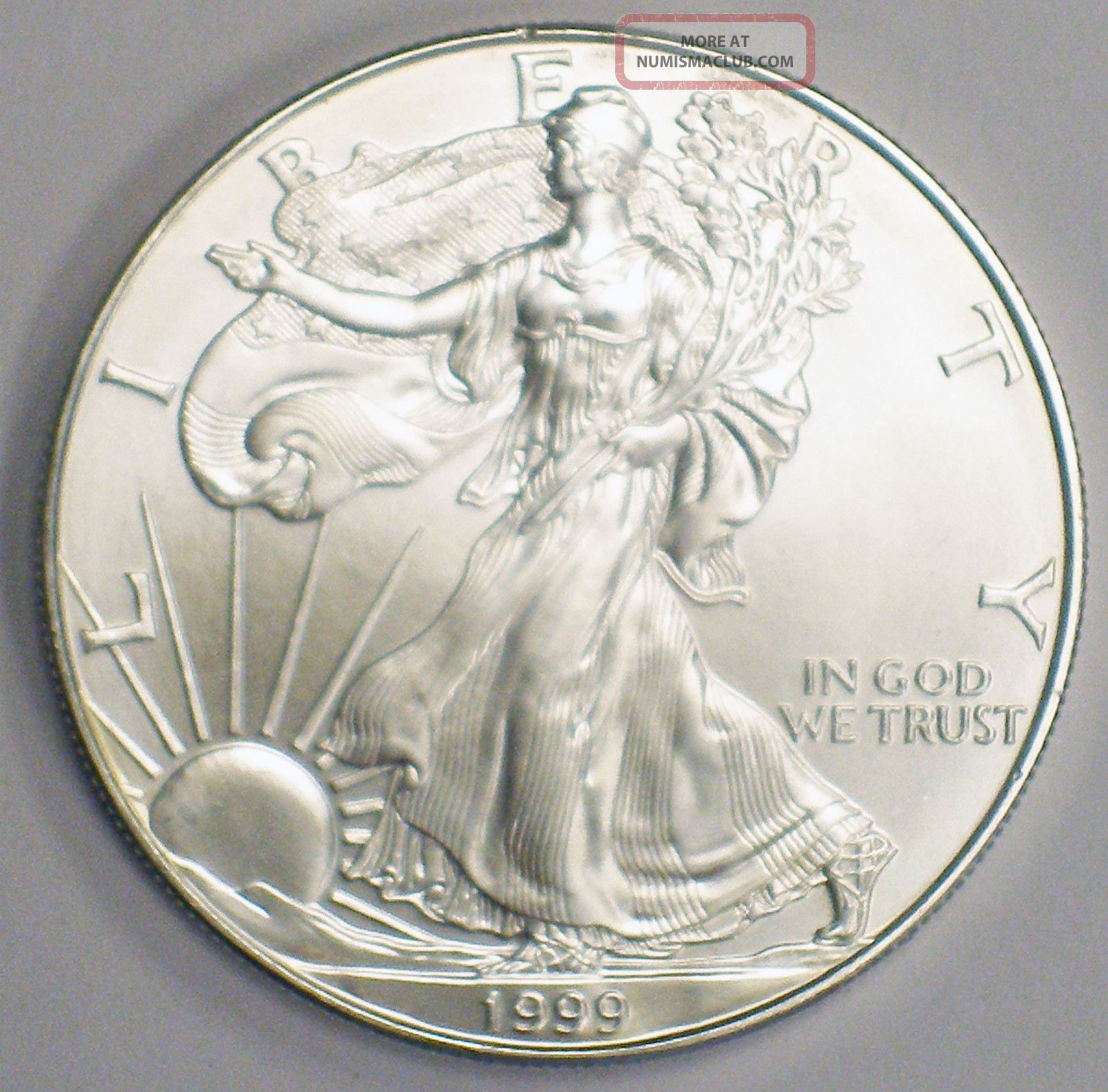 1999 American Silver Eagle Dollar Coin 999 1 Ounce Name