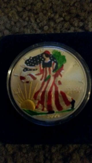 2000 Painted Walking Liberty American Eagle Dollar Coin 1