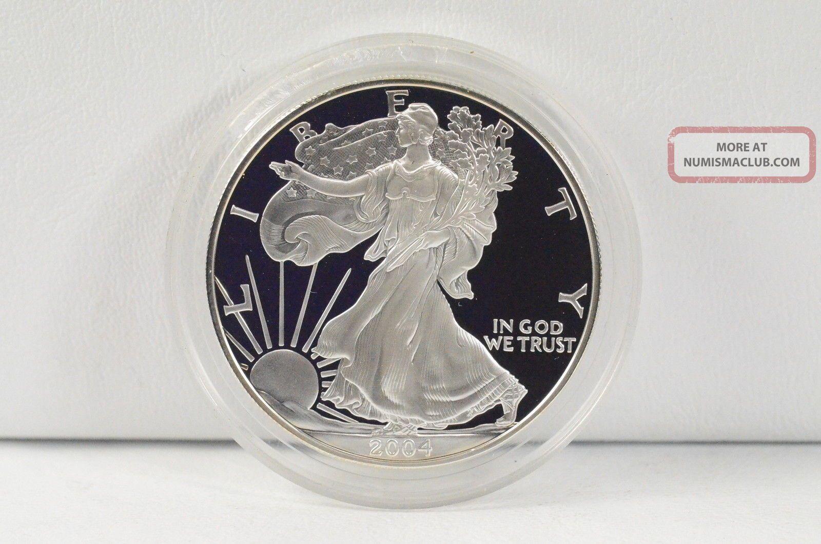 2004 W 1 One Dollar Silver American Eagle 1 Oz Fine