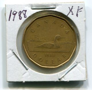 1988 Canada Loon Dollar - Extra Fine - Circulated - photo