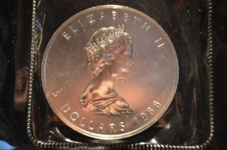1988 Canada Maple Leaf 5 Dollars Elizabeth Ii 1 Oz Fine Silver Coin,  Uncertified photo
