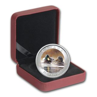 2013 Ducks Of Canada $0.  25 Colored Coin – Mallard photo