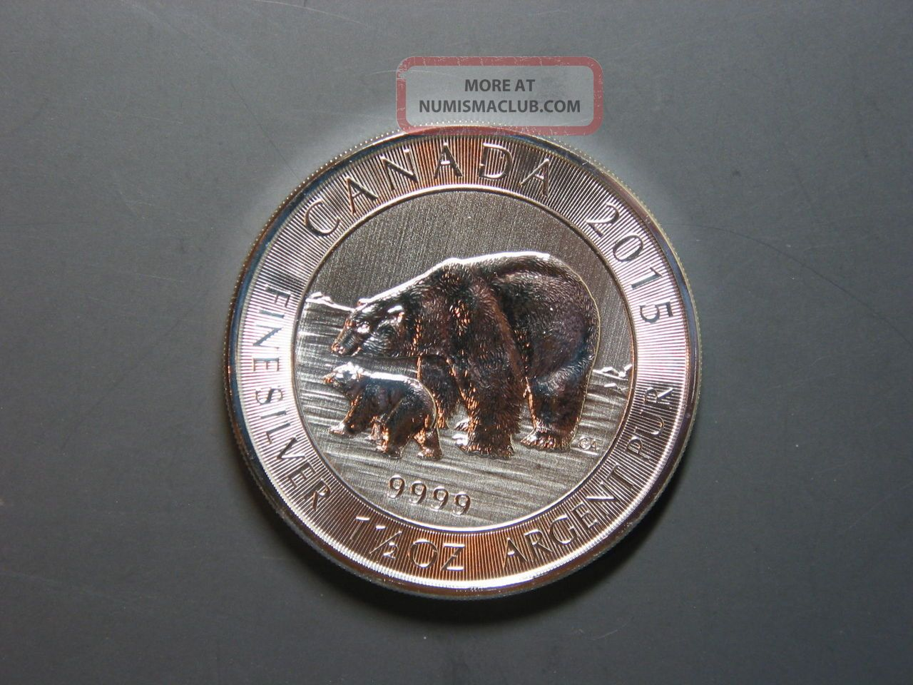 2015 Canada Polar Bear And Cub 8 1 5 Oz 9999 Silver Coin