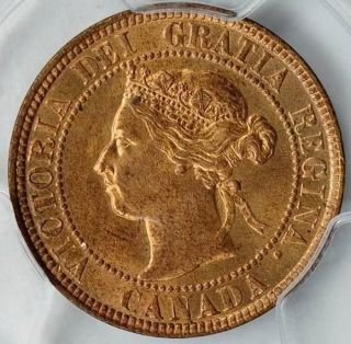 1901,  Canada Large Cent,  Queen Victoria,  Pcgs Ms 64 Rb,  Redbrown Color photo