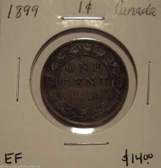 Canada Victoria 1899 Large Cent - Ef photo