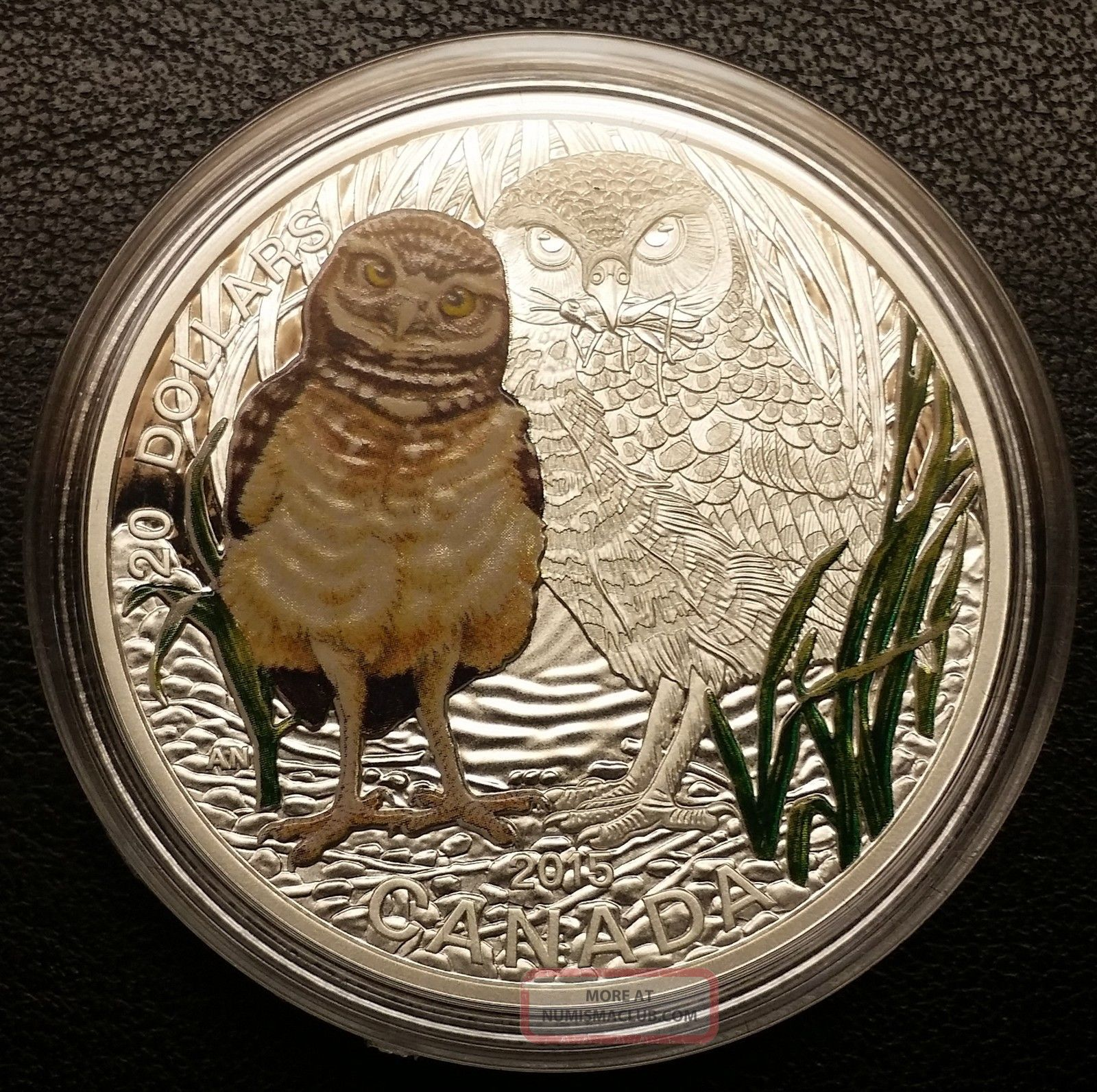 2015 Canada 20 Baby Animals Burrowing Owl 1oz Fine