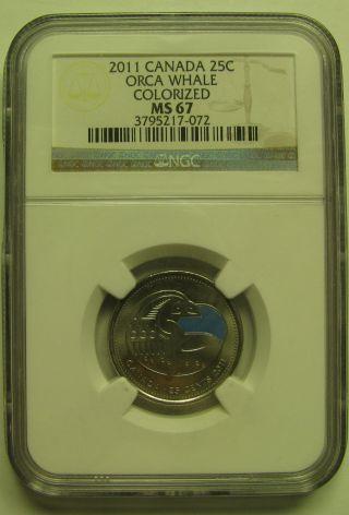 2011 Ngc Ms67 25 Cents Orca Whale Colorized Colour Canada Twenty - Five Quarter photo