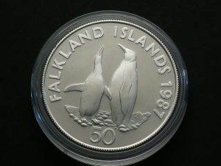 Falkland Islands,  1987,  50 Pence Sterling Silver Wwf Penguin Coin 2259 photo