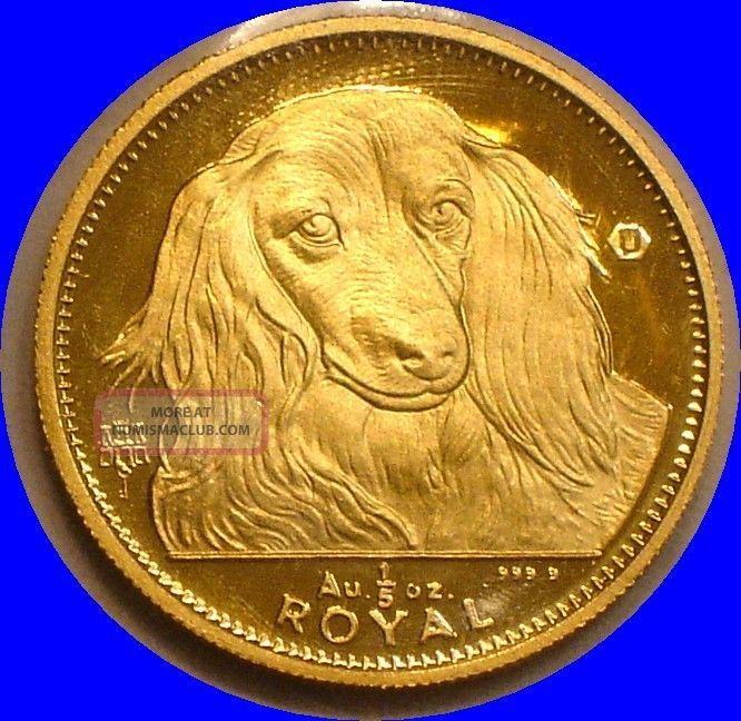 1993 Gold 1 5 Royal Of Gibraltar Long Haired Dachshund