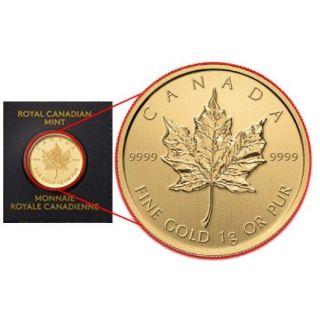 2014 1 Gram Canadian Gold Maplegram.  9999 Fine (, In Assay) photo