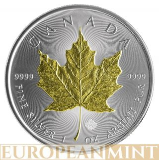 2014 1oz $5 Cad Canadian Silver Maple Leaf 24k Gold Gilded Coin photo