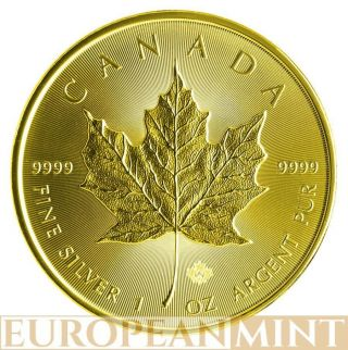 2014 1oz $5 Cad Canadian Silver Maple Leaf Full 24k Gold Gilded Coin photo