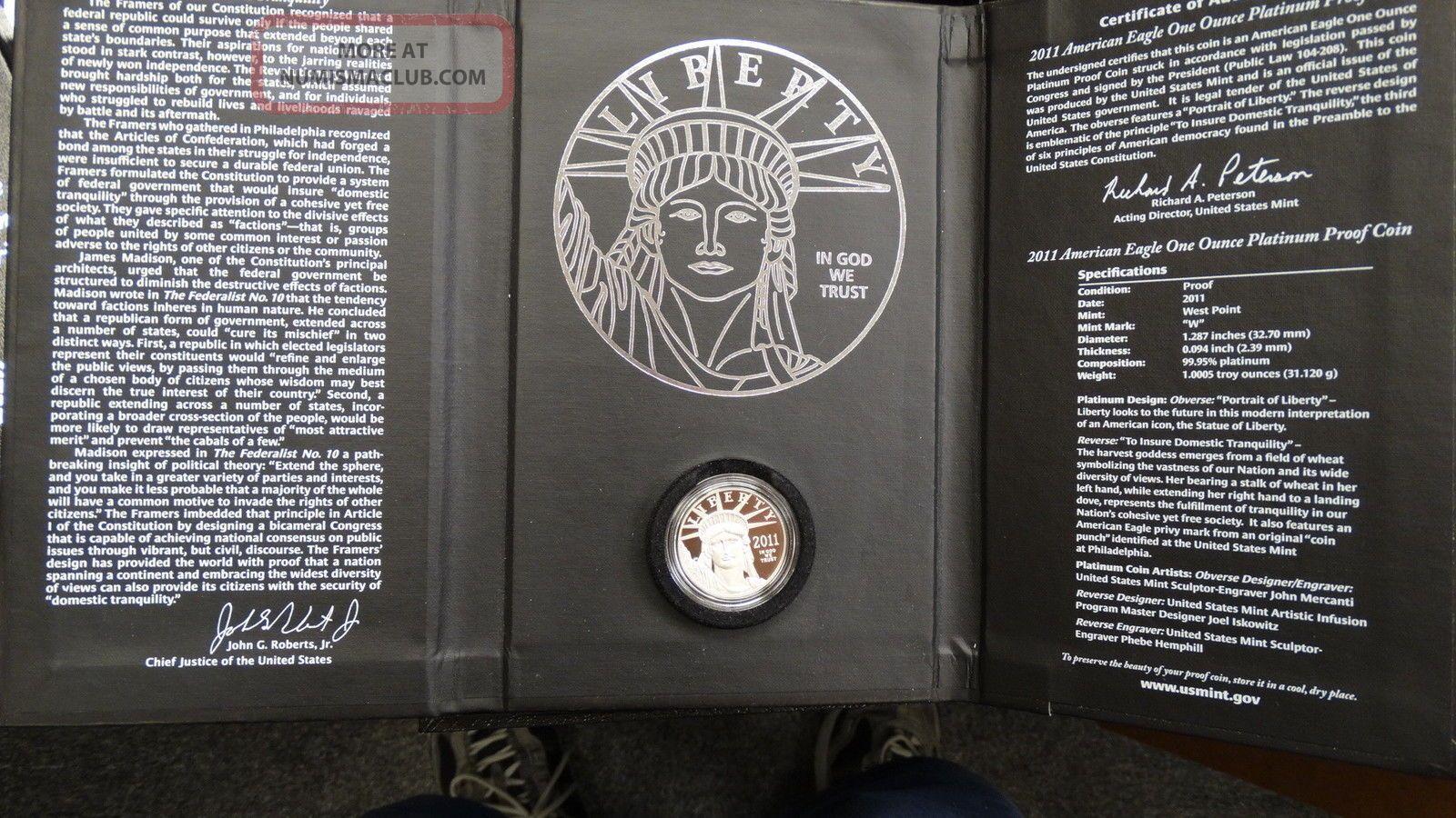 2011 - W Us American Eagle Proof $100 Platinum Coin 99.  95 1oz Platinum photo