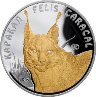 Kazakhstan 2009 100 Tenge Disappearing Animals - Caracal 1 Oz Silver Proof Coin photo