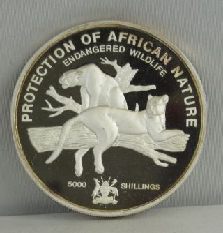 Uganda Proof 1993 5000 Shillings 1/2 Kilo.  999 Silver Endangered Wildlife photo