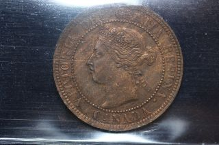 1901 Canada.  Large Cent.  Iccs Graded Au - 55 (xcs198) photo