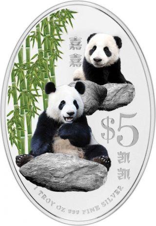 Singapore 2012 $5 Giant Panda Kai Kai Jia Jia Pandas Proof 1 Oz Silver Coin photo