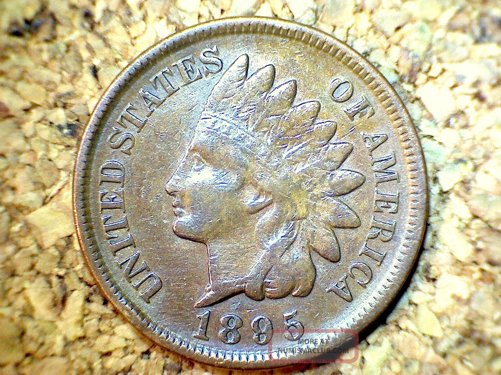 1895 Indian Head Penny - Extra Fine Shape (a349) Small Cents photo