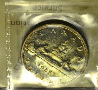 1956 Dollar ($1) Iccs Pl - 66 Pq Greenish Toning photo