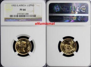 South Africa Elizabeth Ii Gold Proof 1953 1/2 Pound Ngc Pf66 Mintage - 4,  000 Km 53 photo