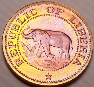 Rare Proof Liberia 1974 Cent Elephant Coin 9,  362 Minted Fantastic photo