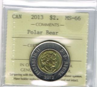 2013 Polar Bear Canada $2 Dollar Iccs Graded Ms - 66 photo