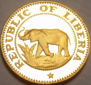 Extremely Rare Proof Liberia 1977 Cent Elephant Coin Only 920 Minted photo