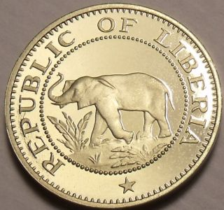 Extremely Rare Proof Liberia 1977 5 Cents Elephant Coin Only 920 Minted Shi photo