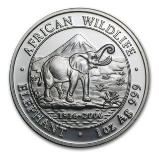 2006 1 Oz 999 Somali Fine Silver African Wildlife Elephant Somalia Coin photo