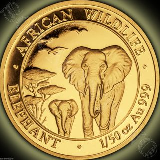2015 Somalia Gold Elephant 1/50 Oz 24k Proof Coin In Capsule African Wildlife photo