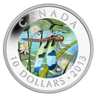 2013 $10 Twelve - Spotted Skimmer Fine Silver Coin photo