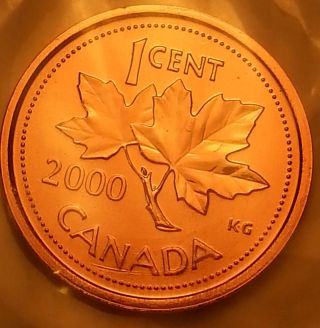 2000 Canada 1 Cent Prooflike Wrap Plastic Dm47 photo