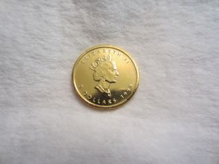 1999 Canada Five Dollar $5 Gold Maple Leaf,  Proof,  Flawless,  1/10 Oz Gold photo