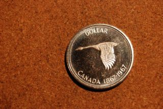 Canada 1967 Proof Dollar photo