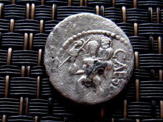 Silver Denarius Of Julius Caesar 47 - 46 Bc Africa Venus Ancient Roman Coin photo