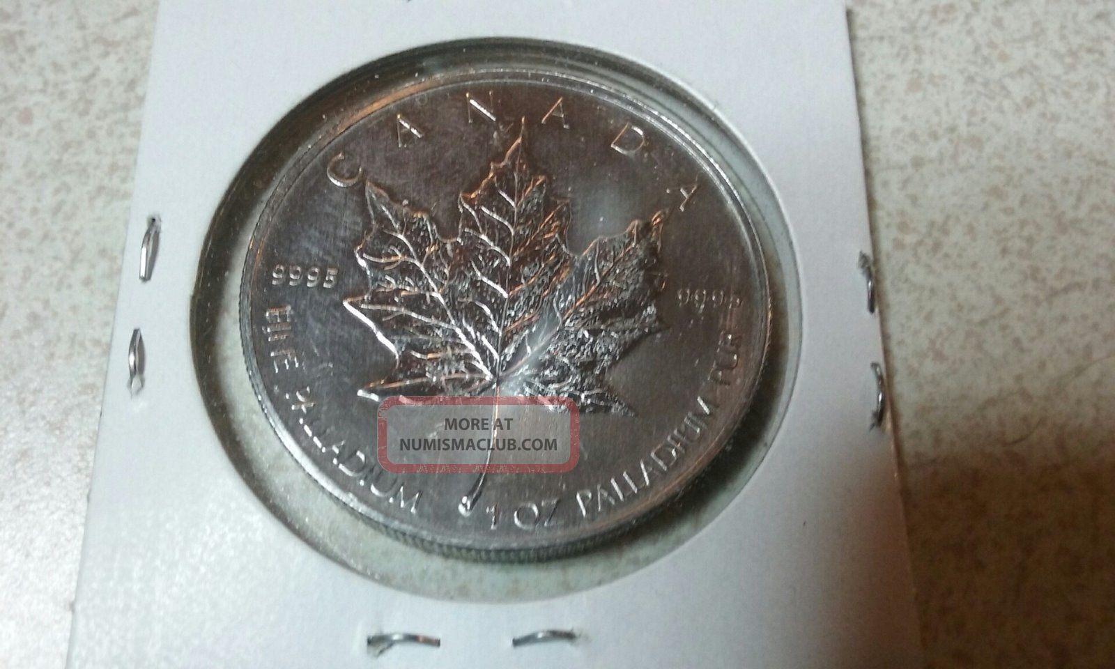 2005 Canadian Maple Leaf 50 Dollar 1 Oz 9995 Palladium Coin
